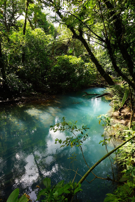 Rio Celeste Wanderung Costa Rica