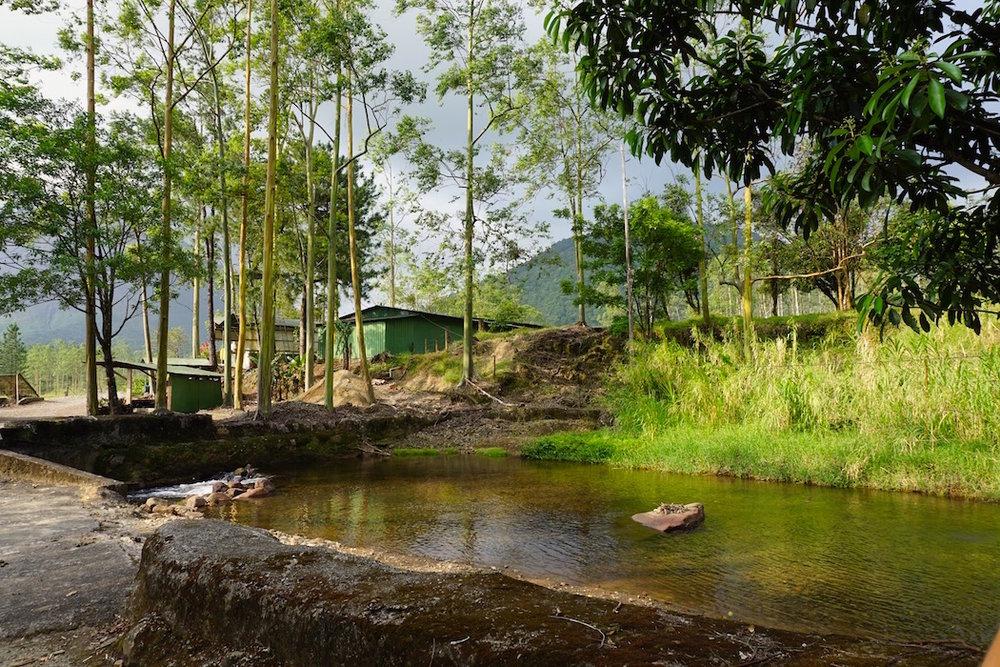 Grüne Landschaften in Costa Rica