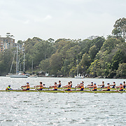 Mens eights near start.jpg