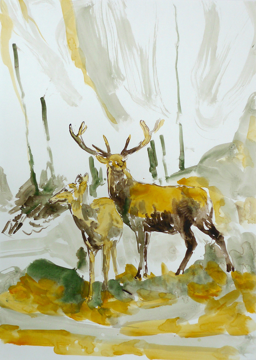 Two Deers in the Wood