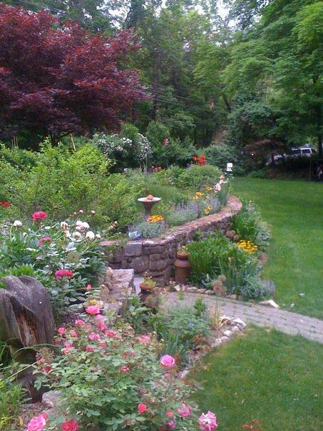 garden2010.jpg