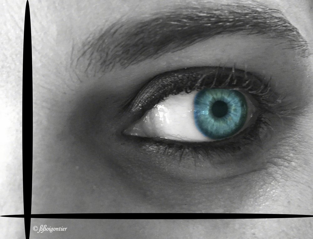 Eyes Collection : Pauline