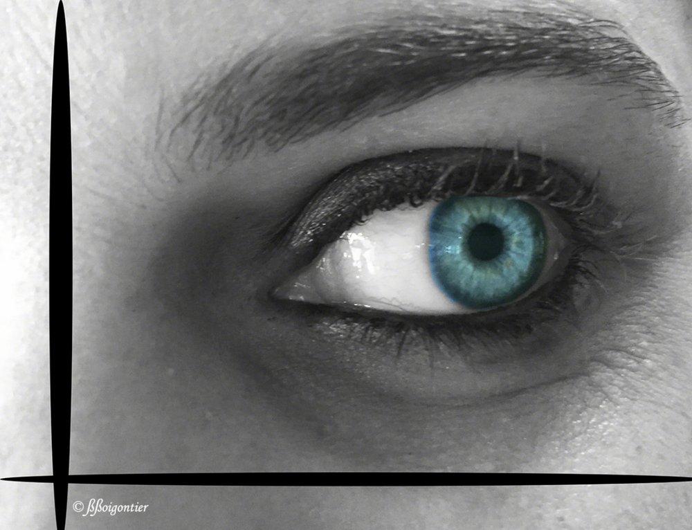 Eyes collection - Féerie des regards, vertiges colorés. Dans les yeux d'inconnus croisés au hasard des rencontres, voyage symphonique au coeur des iris.
