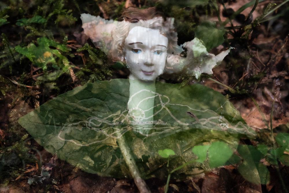 Mushroom Lady Face.