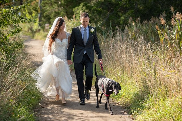 Just a casual walk with the dog! Unexpectedly Beautiful, Unexpectedly Affordable #ctweddingphotography #ctweddings #affordablephotography #dogsofinstagram