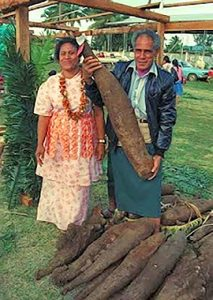 Yams usually grow in tropical climates like Africa, South America, and the Caribbean.