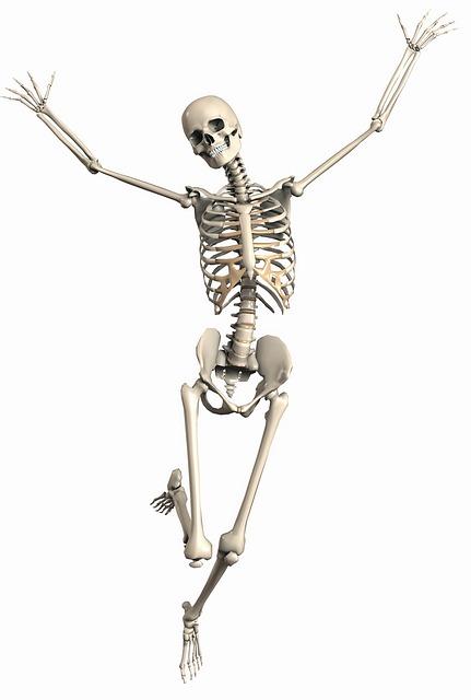 BoneHealth.jpg