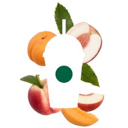 WindowCling Peach_1.png