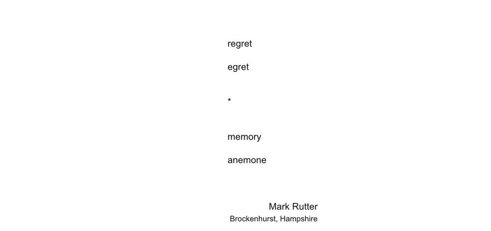 MarkRutter1-1big.jpg