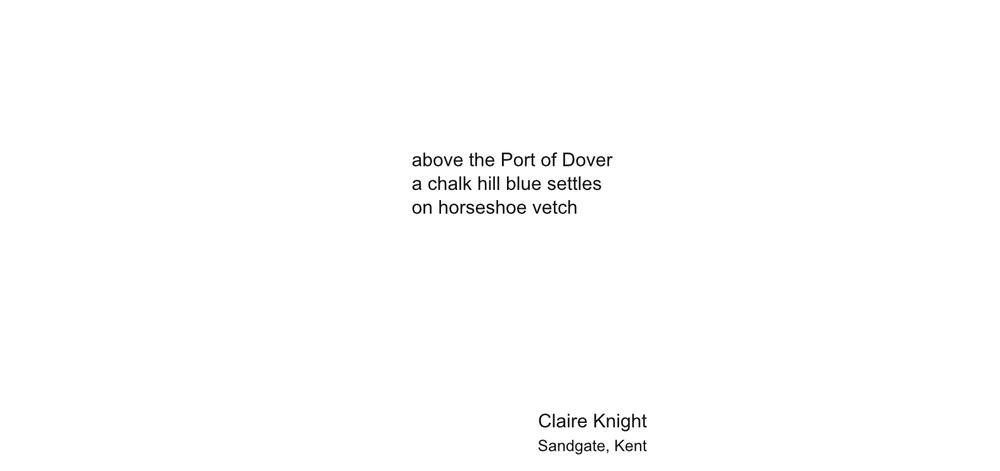 ClaireKnight1-2big.jpg