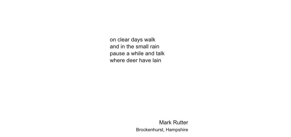 MarkRutter1-4big.jpg