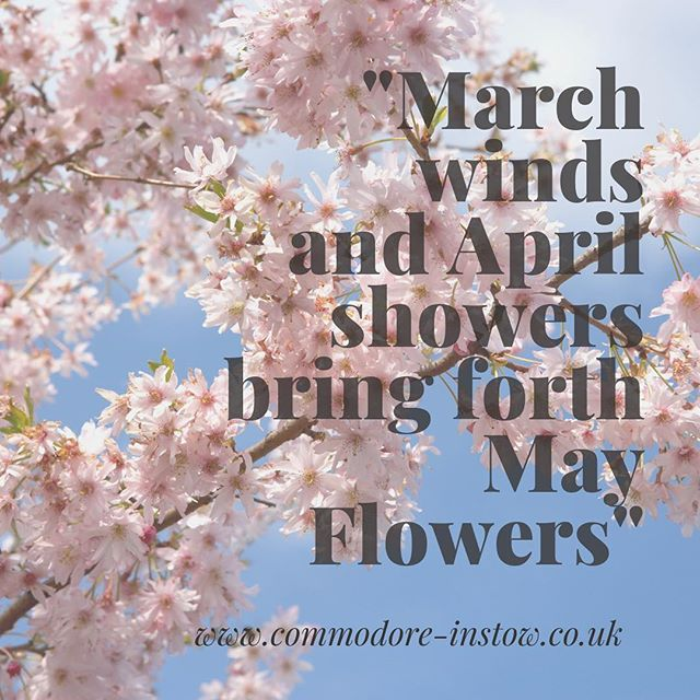 Hello May!  Book a blissful break at the @commodorehotelinstow and choose from bed and breakfast only or dinner, bed and breakfast rates.  The Summer menu is launching this month in the @strandfieldgrillinstow so it is the perfect time to wine, dine and relax.  For full rates and offers ➡️ www.commodore-instow.co.uk/offers-events #commodorehotelinstow #bedandbreakfast #dinnerbedandbreakfast #hotel #hotelbreaks #bookingcom #staycation #mayflowers #blossom #northdevon #visitnorthdevon #visitdevon #instow #bideford #barnstaple #wineanddine #blissfulbreaks #summermenu #newmenu #strandfieldgrillinstow