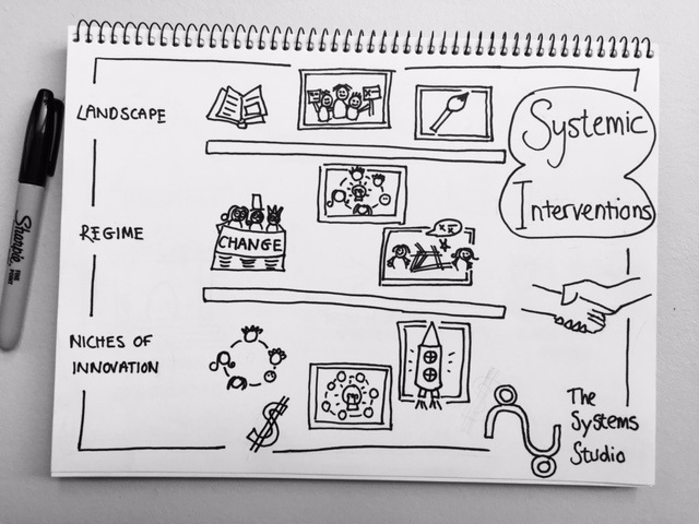 Common Strategies for systems change, mapped onto transition theory