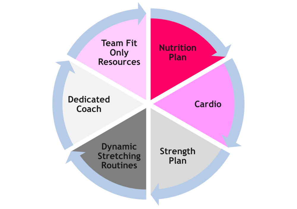 team-fit-personal-training-programs