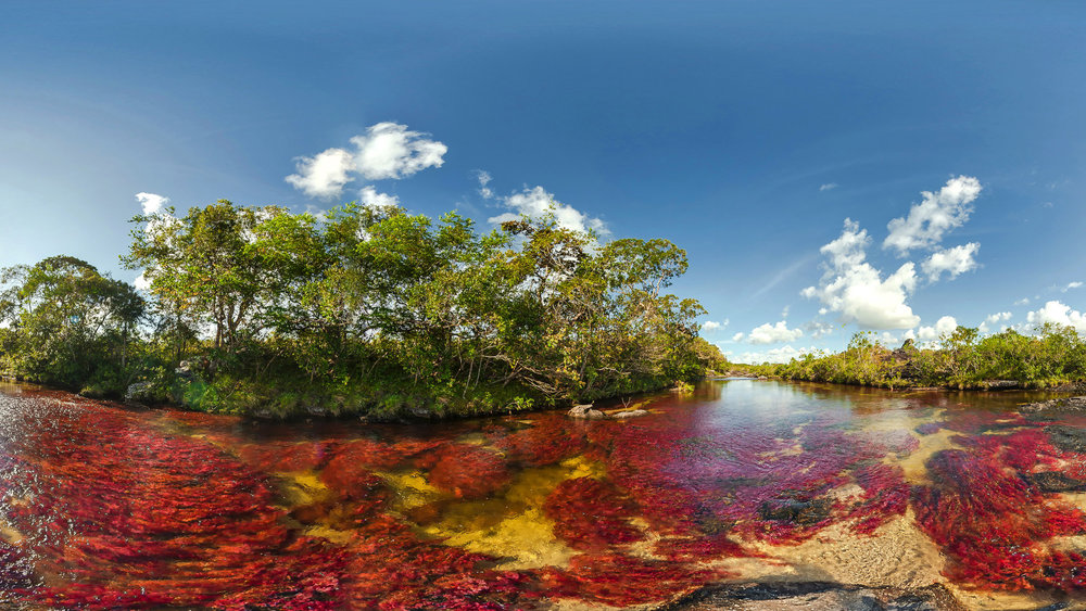 Caño Cristales, also known as River of Five Colours
