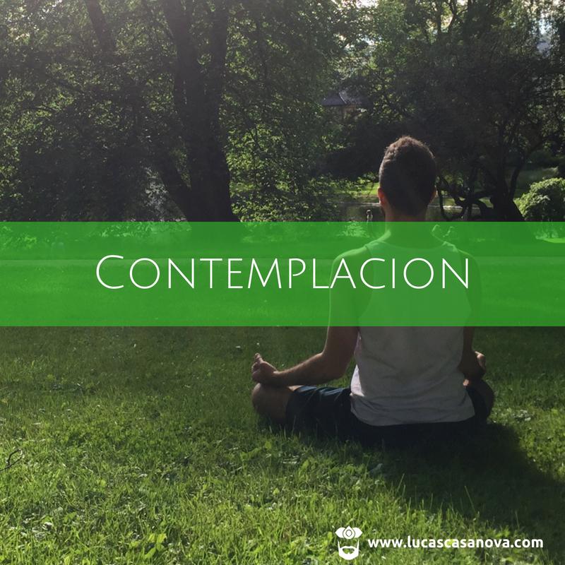 CONTEMPLACION 18.jpg