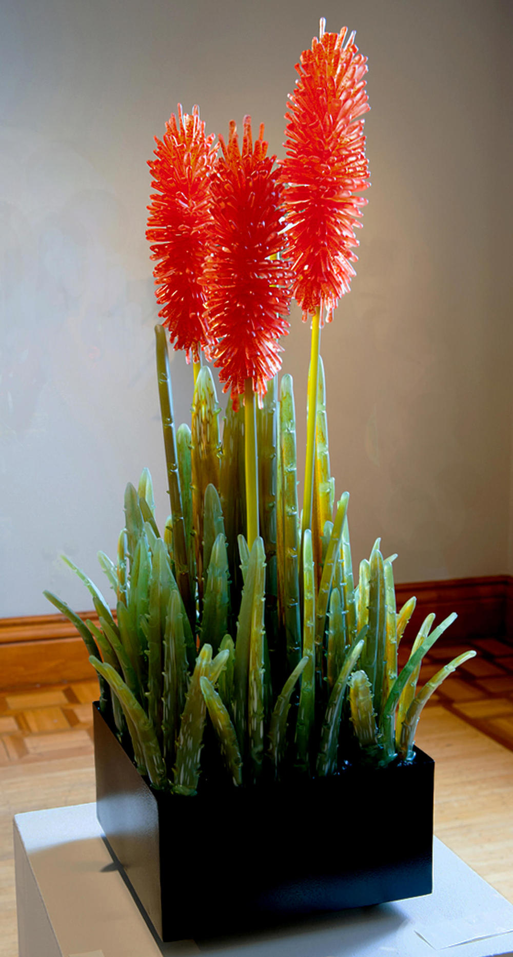 Blossoming Aloe in Vermillion.