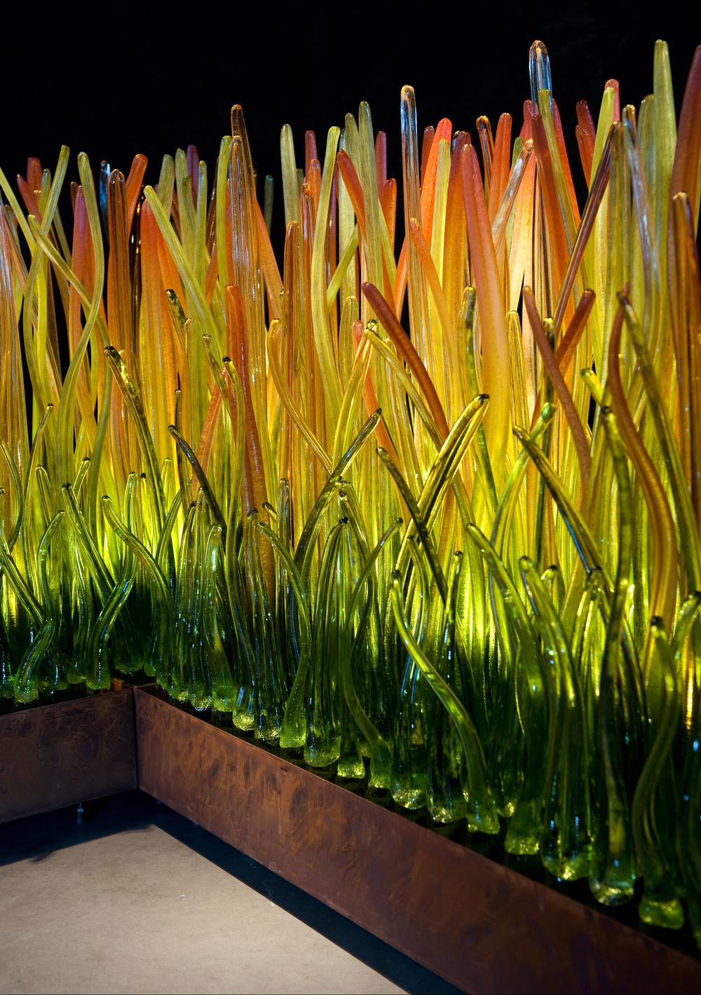 Detail - Prairie Grass.