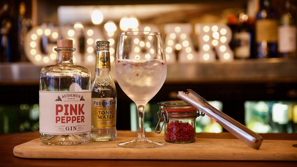 mindbicycle photography topes rochester pink pepper gin fever tree tonic.jpg
