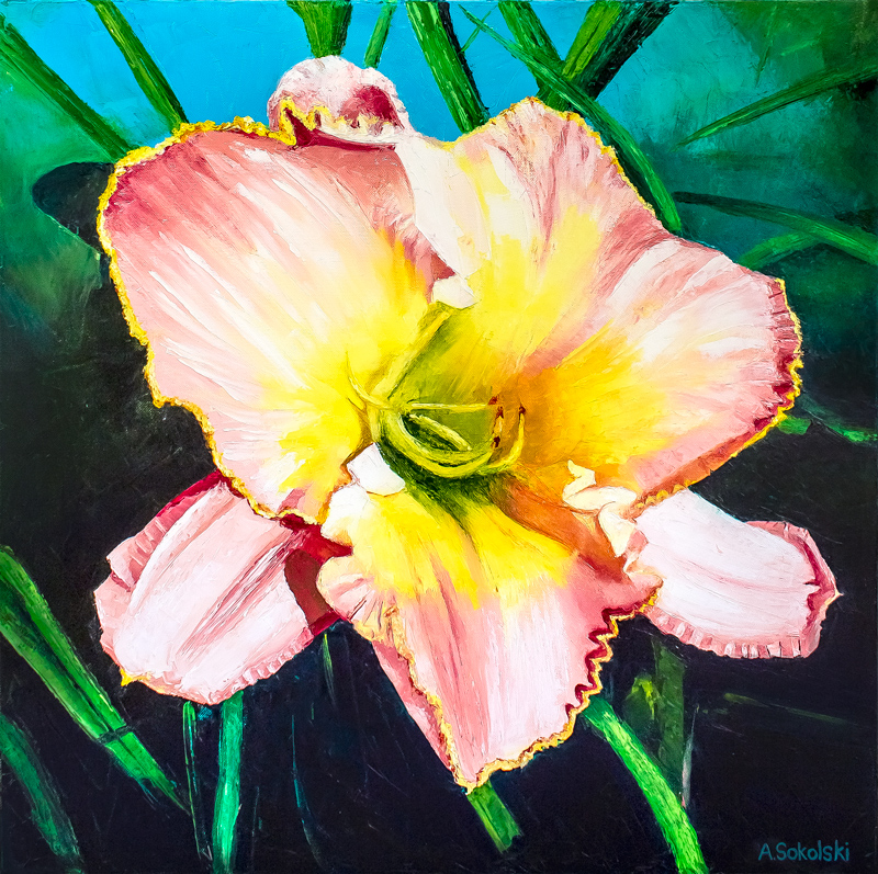 Pink and Yellow Day Lily