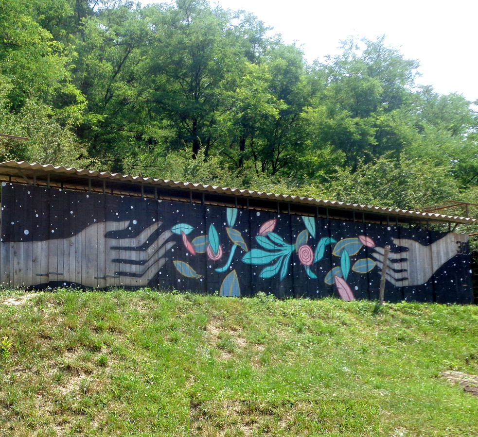 Mural commissioned by Ozora Festival, 2017