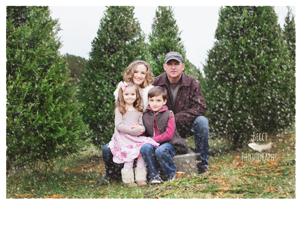 Wallace_family_Becci_Photography_Tree_Farm