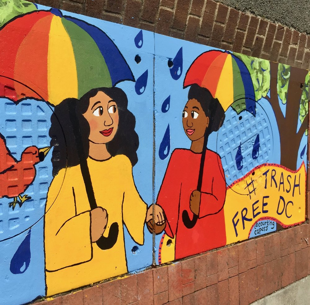 Street Mural for city of Washington, DC and Anacostia Watershed Society in Dupont Circle (June 2017)
