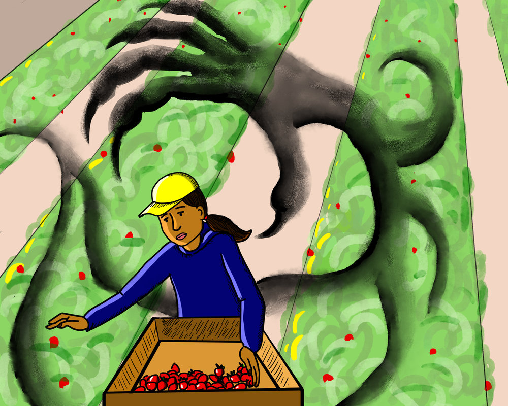 """Illustration for Sierra Club blog: """"The Poison found in Kitchens and Homes across America"""" (2017)"""