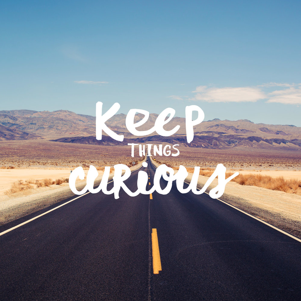 Keep on keeping curious. #plantowander