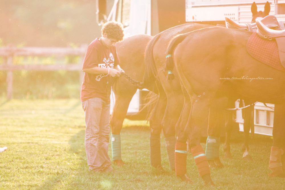 Tail time Sunset Polo at Darlington Polo Club just outside of Pittsburgh, PA.