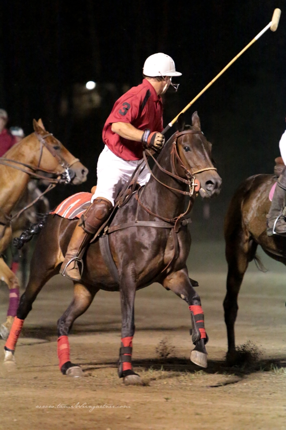 Polo under the Lights in Darlington PA