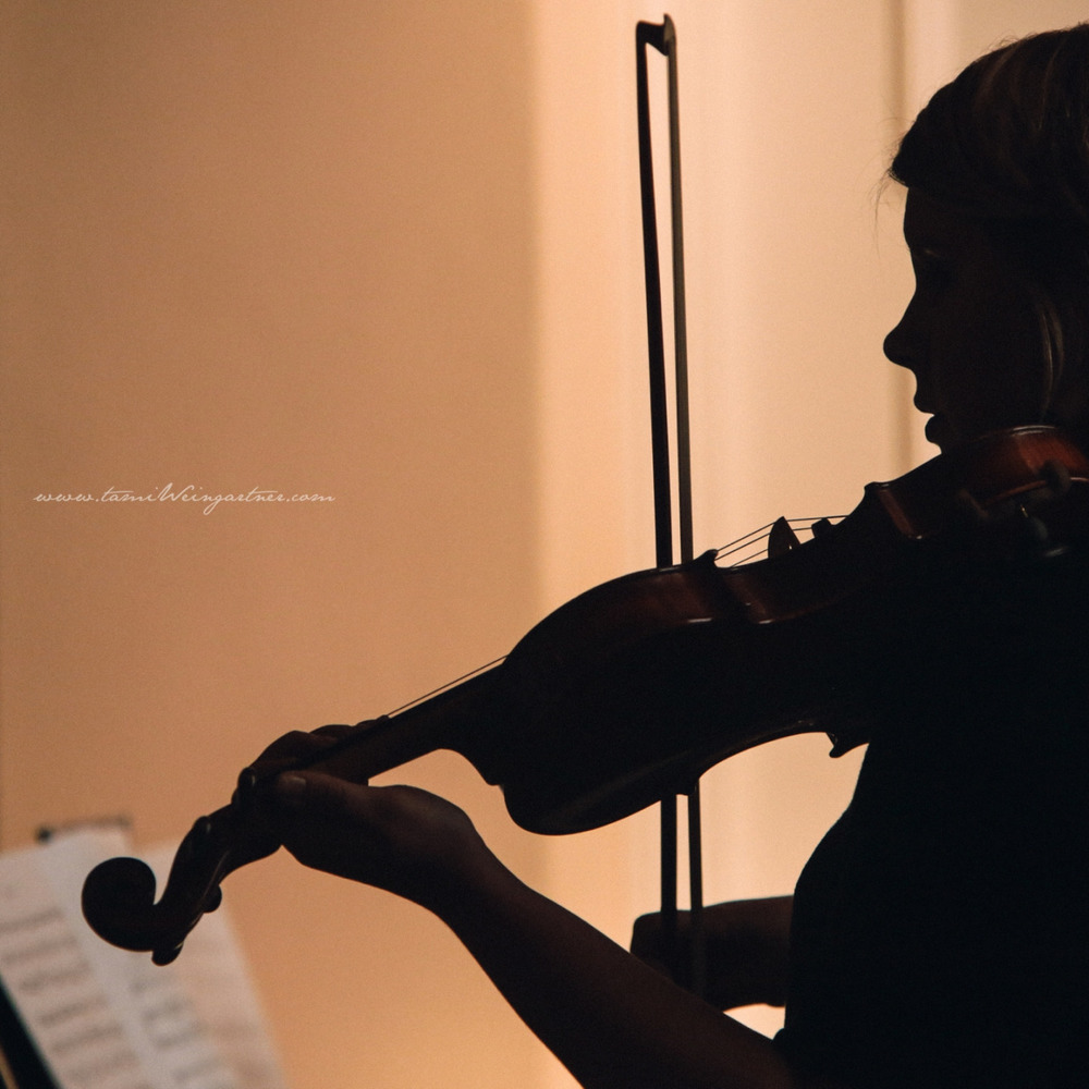Silhouette of a solo Violinist at Wedding.