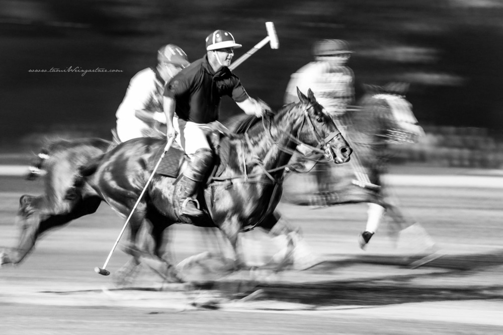 Night Polo under the lights at Darlington Polo Club in Pittsburgh, PA. Fine Art Polo Photography with Motion Blur.