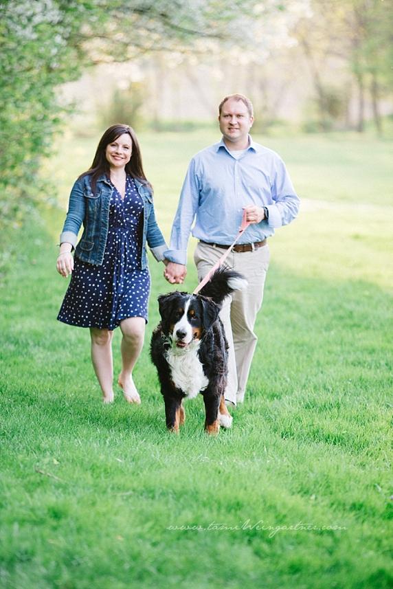 Engaged Couple walking Bernese Mountain dog