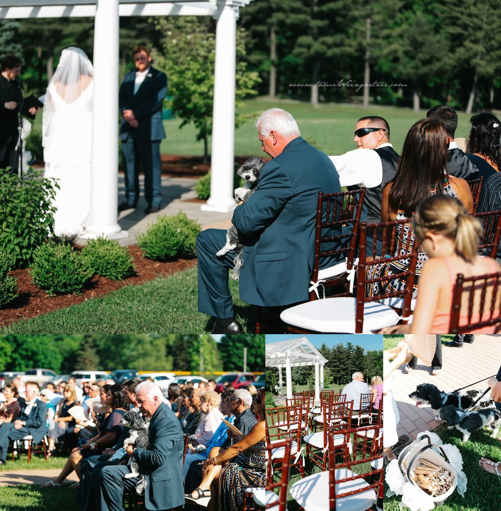 Chiavari chairs for wedding at Harding Park