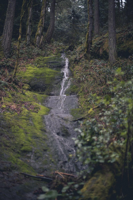 Jack Lambert Hiking (2 of 7).jpg