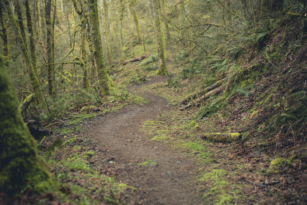 Jack Lambert Hiking (4 of 7).jpg