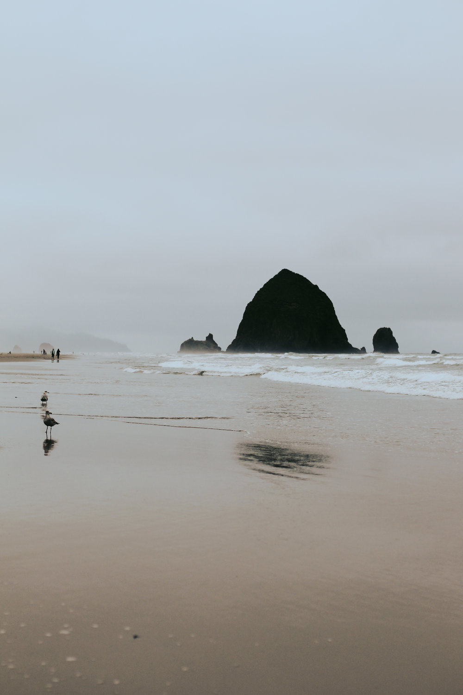 Jack Lambert Photography Cannon Beach-23.jpg