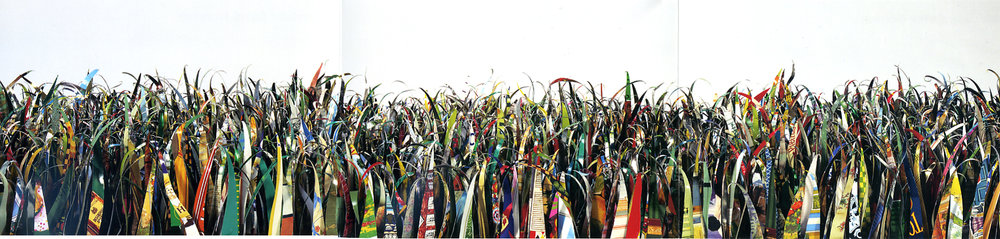 Grass postcard close-up image of blades of grass cut from tin cans.