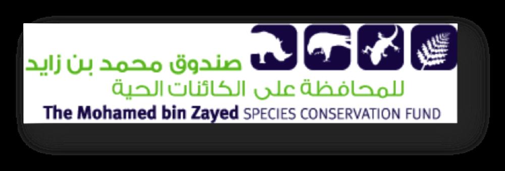 MBZ logo.png