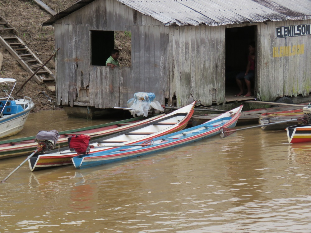 We used  canoes  like these to conduct daily research along the igarapés (small canals). Canoes were piloted by local guides aiding researchers in search of saki monkeys.