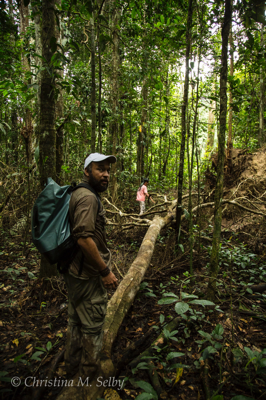 Follow Felipe and a local guide on a 14 km hike.