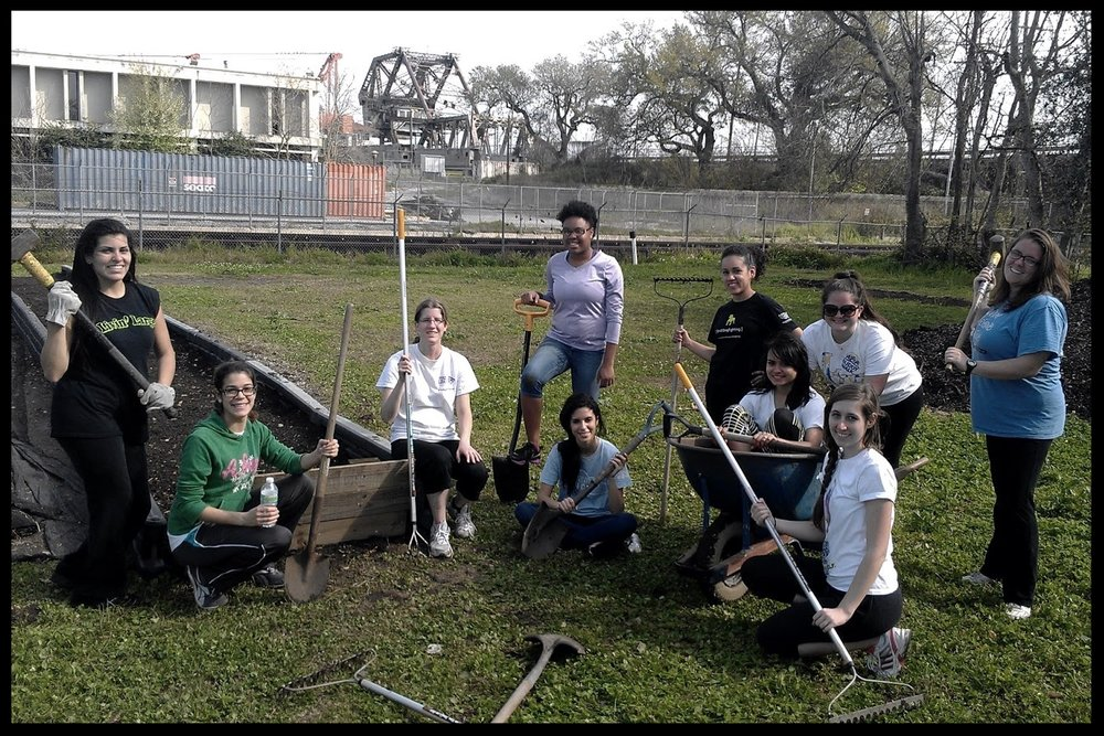 Elan internships in action-urban farming and gardening