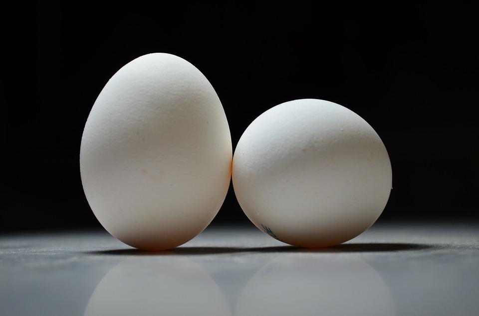 - Dear Vegan Eggs...