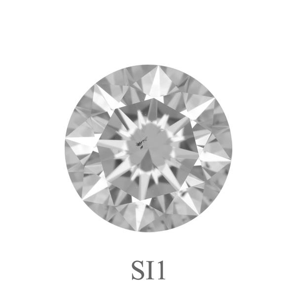 SI1.jpg