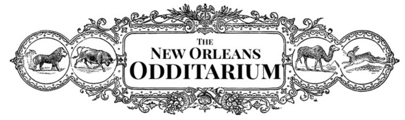The New Orleans Odditarium
