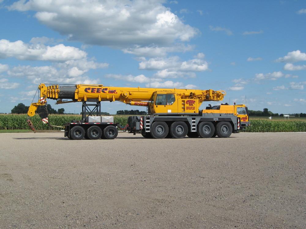 Cranes 1.JPG