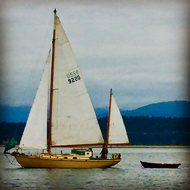 I love a classic wooden ketch. #summer #pacificnorthwest #style