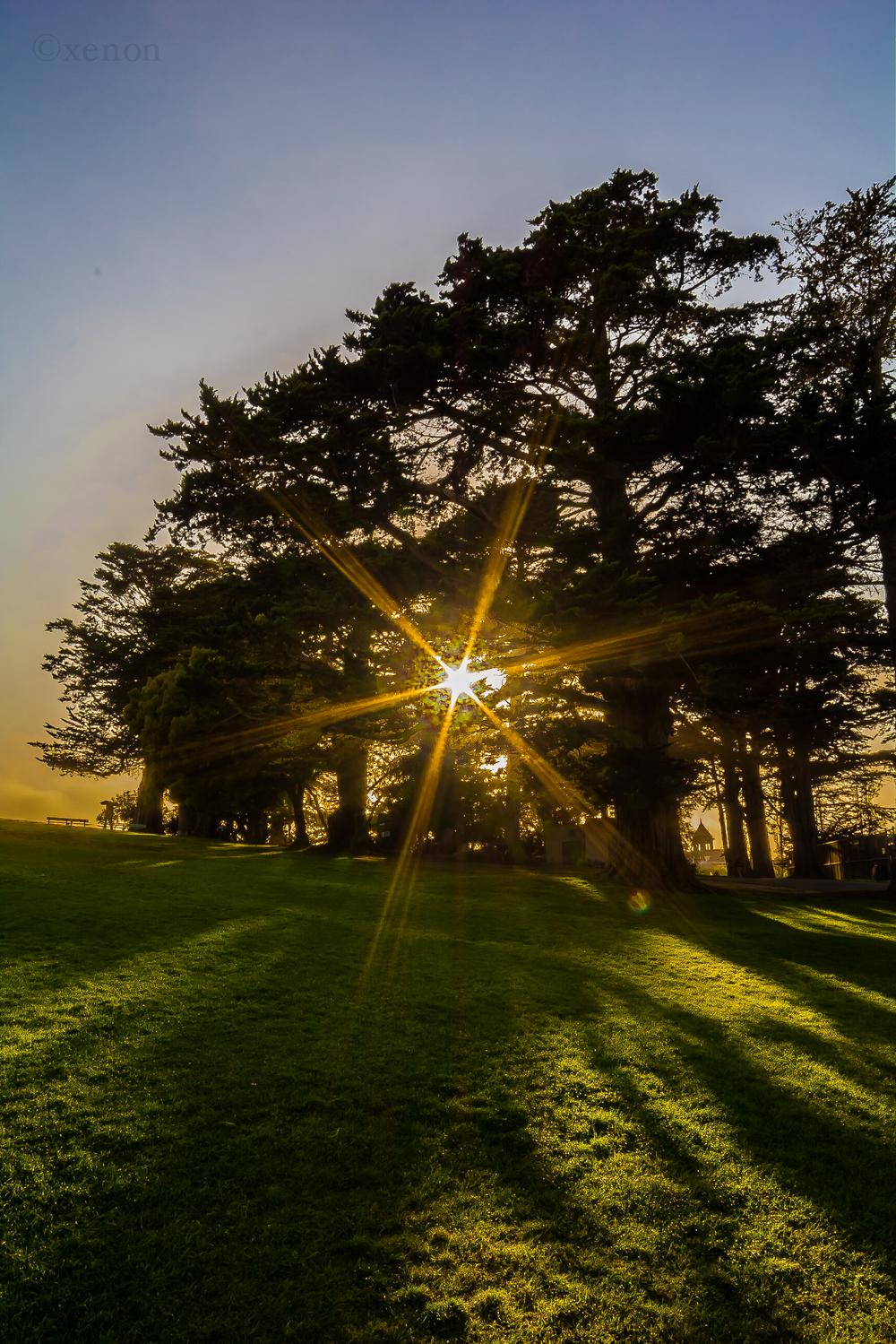 San Francisco, California - 12 June 2015.jpg