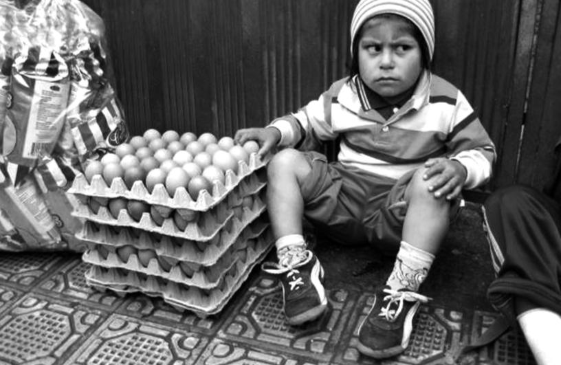 Angry Eggs Boy - Tarika Narain